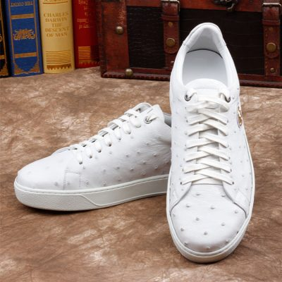 Daily Fashion Ostrich Lace-up Sneaker - White