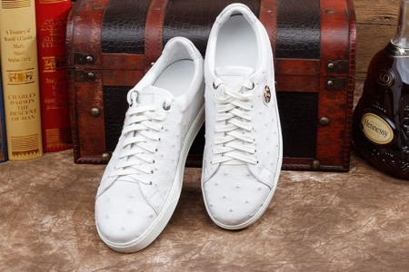 Daily Fashion Ostrich Lace-up Sneaker - White-Exhibition