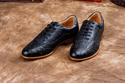 Mens Casual Ostrich Shoes-Dark Blue-Exhibition
